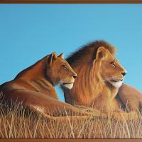 Twee rustende leeuwen: € 375,- Acryl op doek. Vooraf aangebracht reliëf B x H = 102 x 82cm