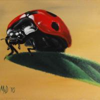 Lieveheersbeestje: € 175,- Acryl op doek B x H = 60 x 50 cm