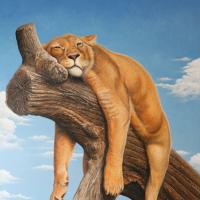 Rustende leeuw: € 480,- Acryl op plaat. Vooraf aangebracht reliëf B x H = 126 x 156 cm, ingelijst.